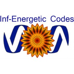 Inf-Energetic Codes (6)