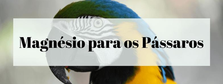 Magnésio para os Pássaros