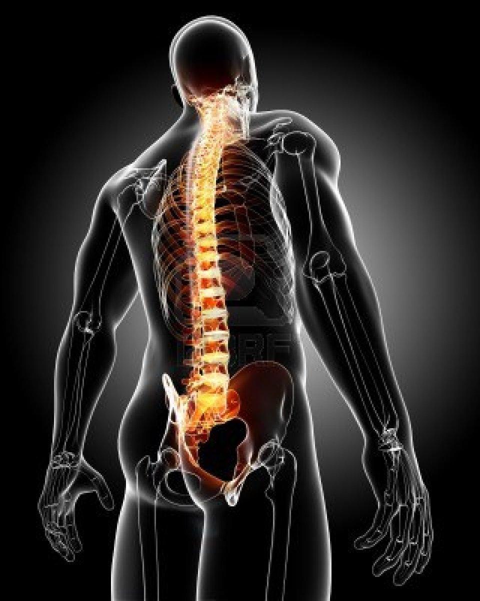 Sintomas da deficiência em Magnésio