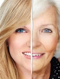 O Magnésio e o Envelhecimento – MAGNÉSIO EM GERIATRIA