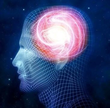 Magnésio para o Cérebro: Memória e Aprendizagem