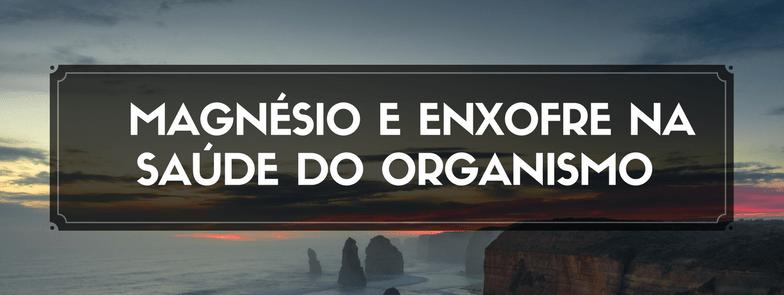 A Importância do Magnésio e do Enxofre na saúde do Organismo