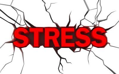MSM Enxofre Orgânico e o Stress