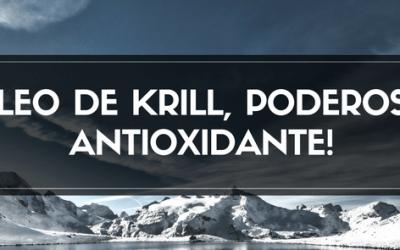 Óleo de Krill, Poderoso Antioxidante!