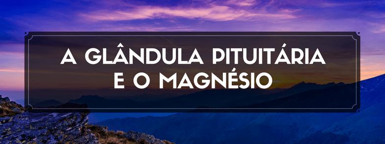 A Glândula Pituitária e o Magnésio