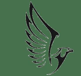 aguia-fundação-2
