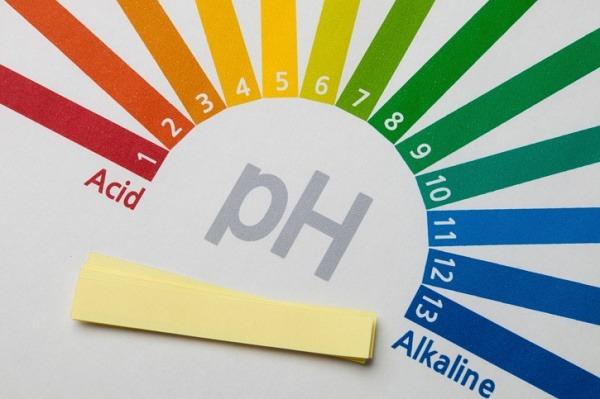 O seu pH está ácido? Tudo o que precisa saber para se proteger de doenças