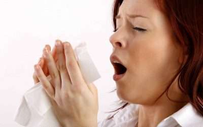 MSM e Alergias