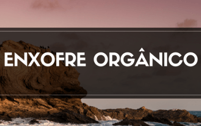 METIL SULFONIL METANO (MSM) – Enxofre Orgânico