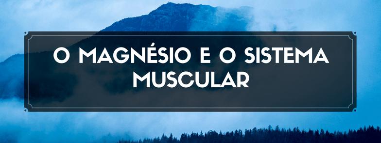 O Magnésio e o Sistema Muscular