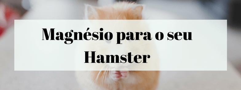 Magnésio para o seu Hamster