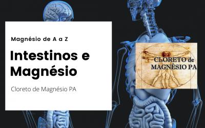 Intestinos e  Magnésio – Magnésio de A a Z