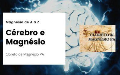 Cérebro e Magnésio – Magnésio de A a Z